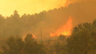 UE pede desculpa a Portugal pela falta de ajuda nos incêndios de 2017