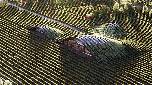 5 magnificent examples of green architecture around the world