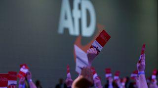 """Spaltet sich die AfD? """"Keine Björn-Höcke-Partei"""""""