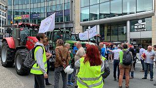 Agricultores belgas criticam acordo com Mercosul