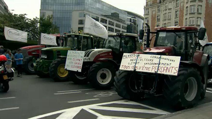 Brüsszel: A MERCOSUR ellen tüntettek