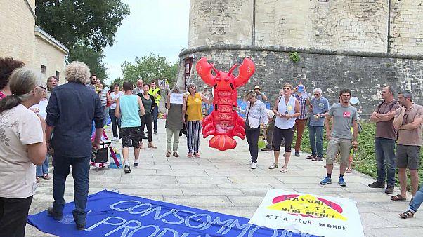 Le #homardgate, scandale de l'été en France