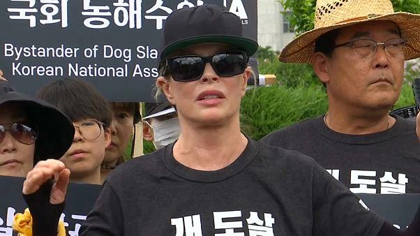 شاهد: مظاهرات مؤيدة ومناهضة لأكل لحوم الكلاب في سيول