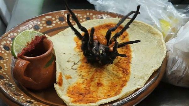 صورة لشطيرة العنكبوت