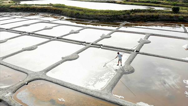 أحواض جمع الملح في بلدة غيراند في غرب فرنسا