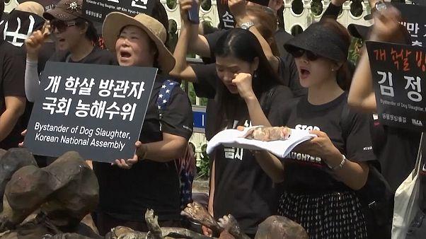 ویدئو؛ راهپیمایی مخالفان و موافقان خوردن گوشت سگ در کره