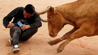 ثمانية جرحى في آخر أيام مهرجان الثيران بإسبانيا