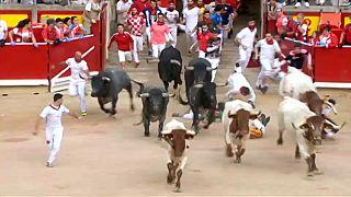 El colosal astado Rabanero siembra el pánico en las calles de Pamplona