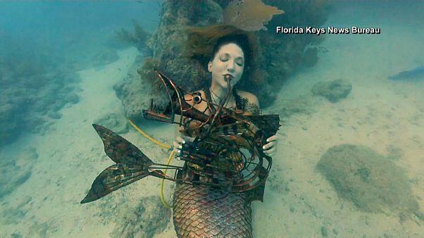 Watch: Underwater music festival fills ocean with sound