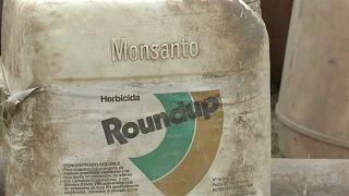 Monsanto-Klage: Schadenersatz auf 25 Millionen herabgesetzt