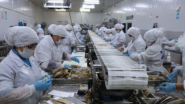 Nisan ayında işsizlik oranı yüzde 13 oldu: İşsiz sayısı 4 milyon 202 bine ulaştı