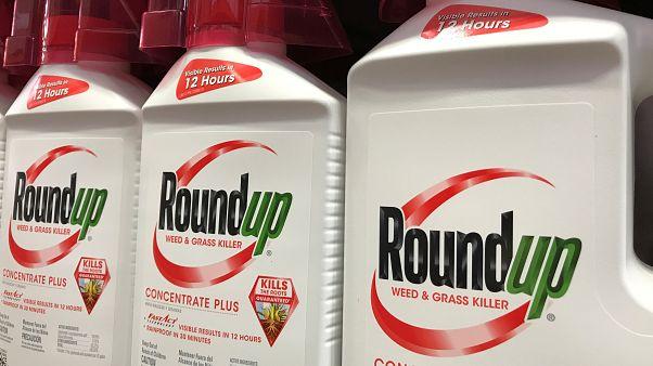 Monsanto: meno risarcimento, ma condanna confermata