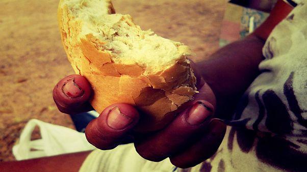 فائو: فقر غذایی و گرسنگی پس از یک دهه کاهش، دوباره افزایش یافته است