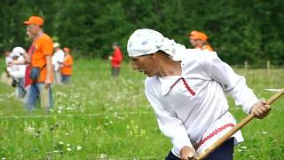 Watch: Russians compete in grass scything contest