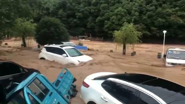 Downpour hits east China province, flooding roads and farmland