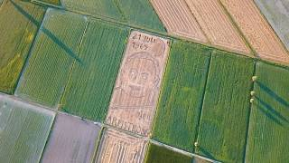 Giant portrait of Neil Armstrong created in Italy wheat field for Apollo 11 anniversary