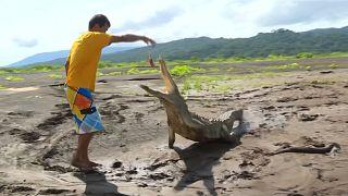 Der mit den Krokodilen speist
