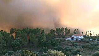 Incendie majeur dans le centre du Portugal