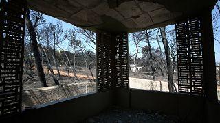 Grecia: ricostruzione è ferma un anno dopo gli incendi
