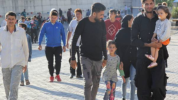 Türkiye'ye yasa dışı yollardan giren göçmenler