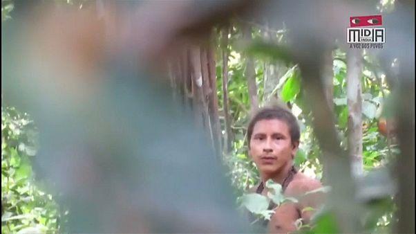 Novo vídeo de indígenas isolados na Amazónia