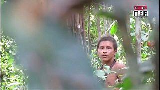 شاهد: أفراد قبيلة أمازونية معزولة يتهددها خطر إزالة الغابات
