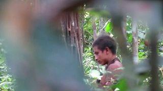 [Vídeo] Imágenes de indígenas Awá para denunciar la deforestación