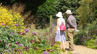 """فيديو: تعرف على حدائق """"بيث شاتو"""" حيث تنمو الأزهار بدون قطرة ماء واحدة"""