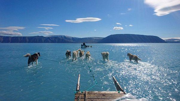 1880'den beri dünyanın en sıcak temmuz ayı yaşanıyor