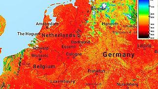 Rosso su tela: ritratti di un continente bruciato dal caldo