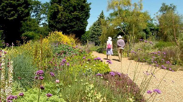تصویری از باغ بث شاتو گراول، بریتانیا