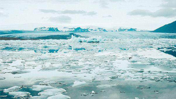 Image result for یخچالها ۱۰۰ برابر سریعتر از پیشبینیها در حال آب شدن هستند