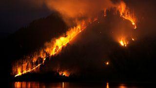 Már majdnem félmillióan kérik, hogy csináljanak valamit a szibériai erdőtüzekkel