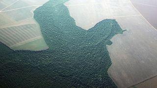 Az amazóniai esőerdő írtásának egy képe 2013 áprilisából