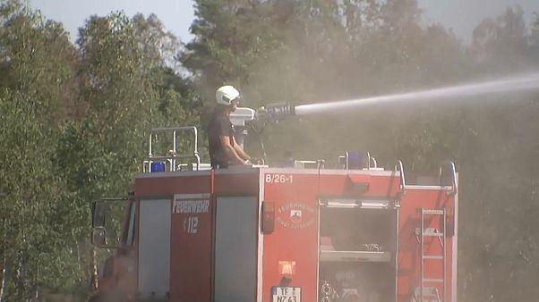 Explosionsgefahr: Wieder Waldbrand in Brandenburg