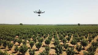Robots, drones and the future of farming