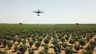 Újgenerációs robotok a mezőgazdaságban
