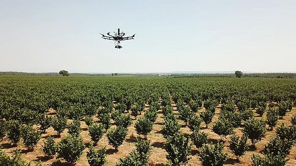 Präzisionslandwirtschaft gibt Bauern die Werkzeuge der Zukunft