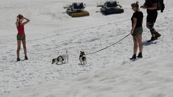 Pólóban hógolyóznak a Dachstein gleccserre kirándulók