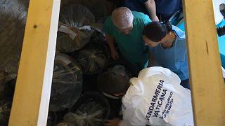 Especialistas forenses avaliam sacos no cemitério teutónico do Vaticano
