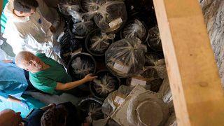 Forensiker Giovanni Arcudi vor Knochenfunden vom deutschen Friedhof im Vatikan