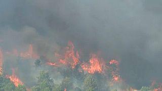 Croazia: l'incendio invade  l'autostrada, 900 ettari in fiamme