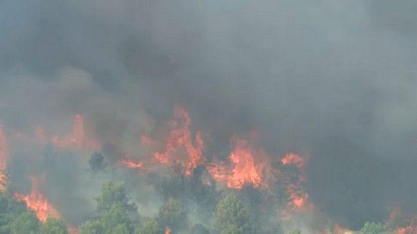 Kroatien: Waldbrand sorgt für Verkehrschaos