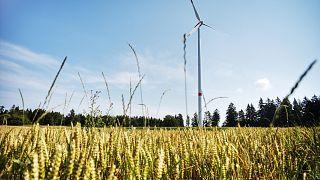 Ça y est, l'humanité a épuisé ses ressources renouvelables pour 2019