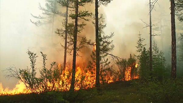 Onda de calor derrete glaciares e incendeia florestas no Ártico