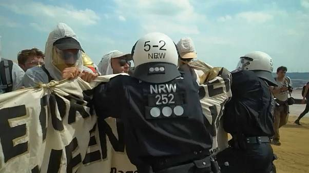 GW: более 160 человек погибли, защищая природу