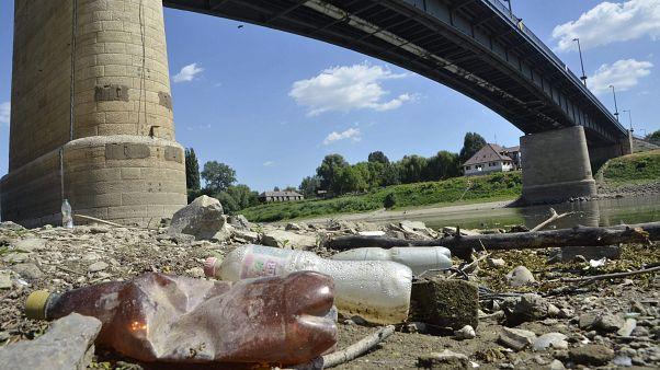 Szombaton indul a Felső-Tiszán a PET-kupa, önkéntesek tisztítják meg a folyót a szeméttől