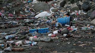 ¿Sería capaz de vivir sin plásticos? En verano consumimos un 40% más