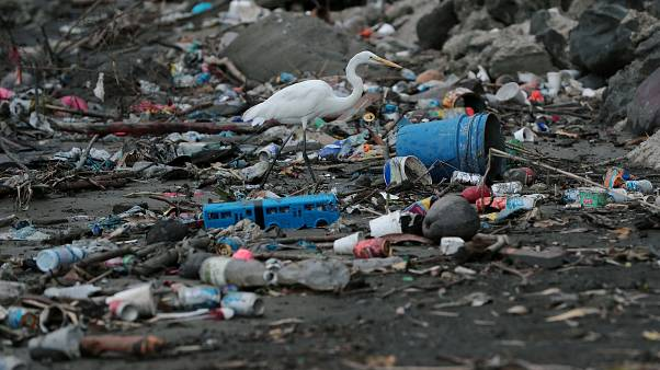 Plastic waste 'goes up by 40% during the summer'