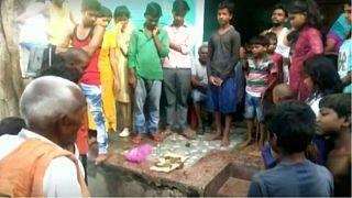 ویدئو؛ جوان مست هندی مار مهاجم را با دندان تکه تکه کرد